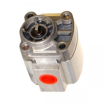 NEW Haldex AOC Gen 1, 2, 3 precharge pump motor. Bühler 1.13.055.220 analogues