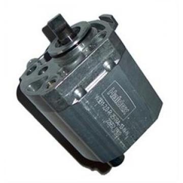 Haldex AOC Gen 1, 2, 3 precharge pump repair kit - Maxi. Fit to VAG, Volvo, Ford